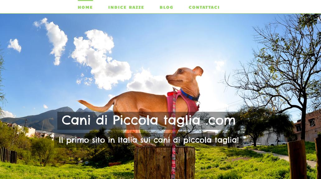 www.canidipiccolataglia.com
